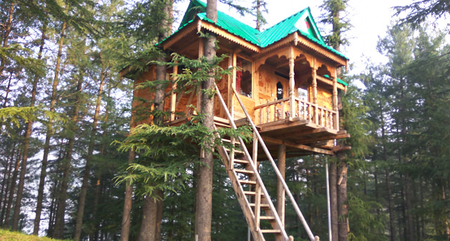 tree-house, Manali